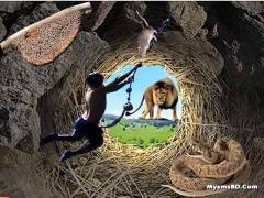 মৃত্যু, কবর, জীবন ও পৃথিবী নিয়ে একটি শিক্ষনীয় ইসলামিক গল্প