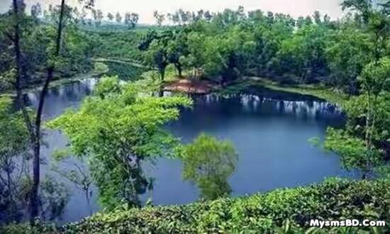 'ঝর্ণা সুন্দরী'র হামহাম ঘুরে আসুন