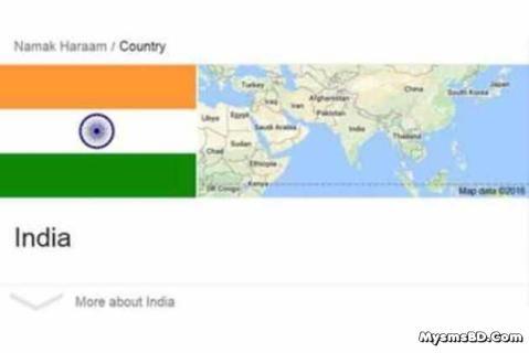 গুগলের মতে ভারত 'নমক হারাম' দেশ বা অকৃতজ্ঞ দেশ