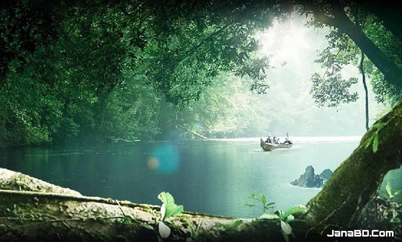 ভ্রমণ : প্রাচীনতম রেইন ফরেস্ট 'তামান নেগারা'